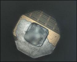 Imagen del chip