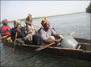 Cosechadoras en una canoa