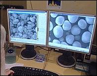 Un investigadora de robos nucleares del ITU