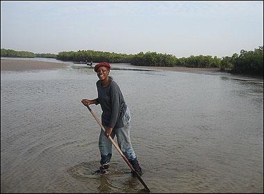 Fatou Janha Mboob